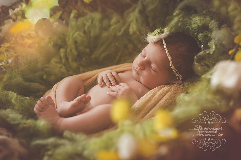 Babyfotografie Karlsruhe & Bruchsal