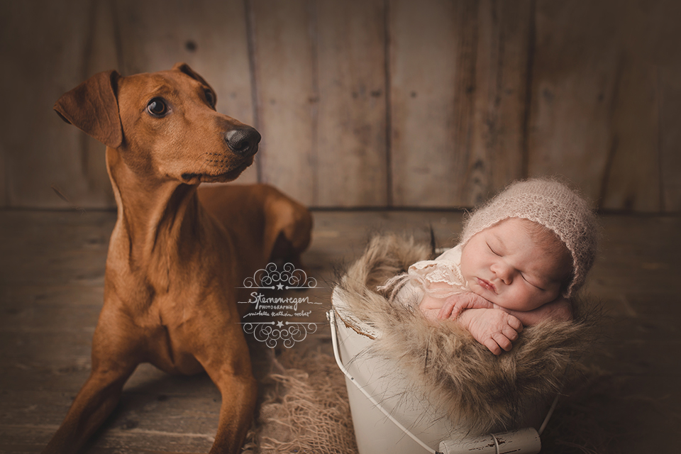 Sternenregen Photographie exclusive Neugeborenenfotos Kraichtal