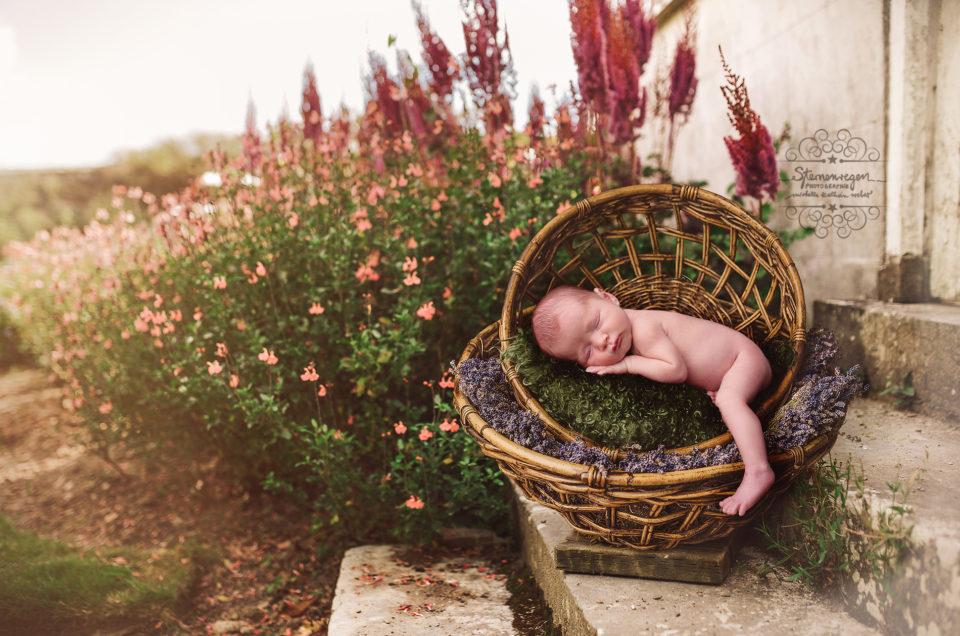 Neugeborenenfotografie- In traumhaften Kulissen