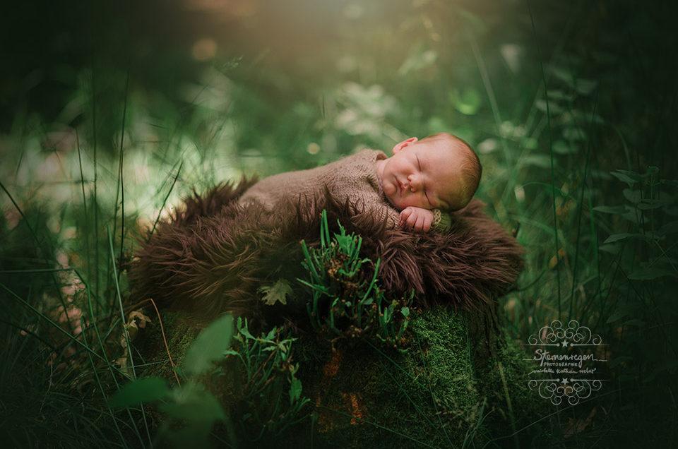 Newbornfotos indoor – und im Wald bei Karlsruhe