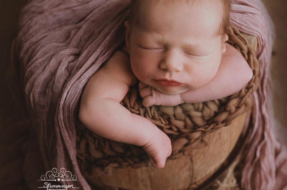 Neugeborenen- und Babyfotografie vielseitig,kreativ und professionell