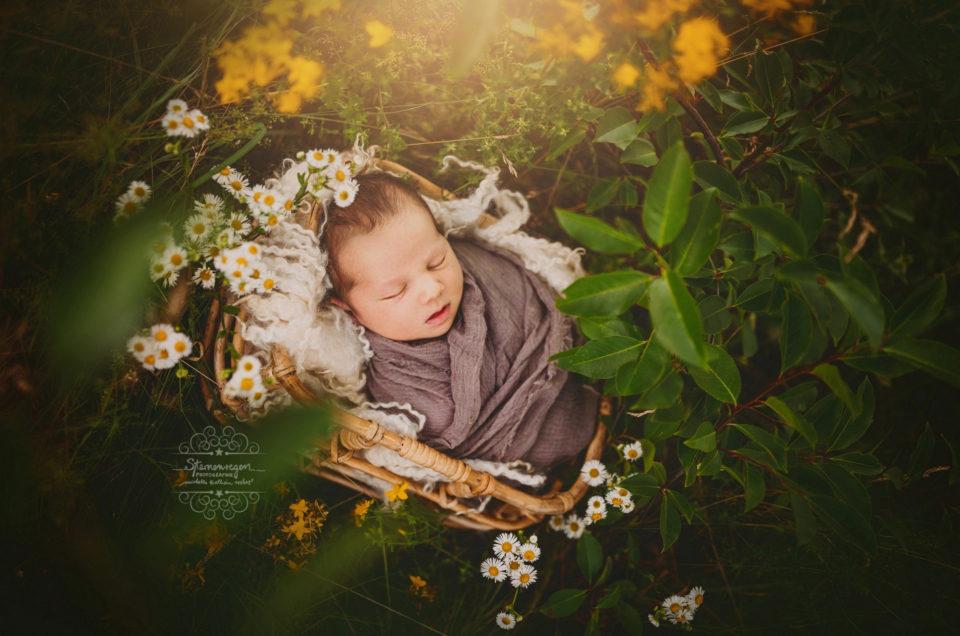 Neugeborenenfotografie in der Natur- Baby Outdoorshooting