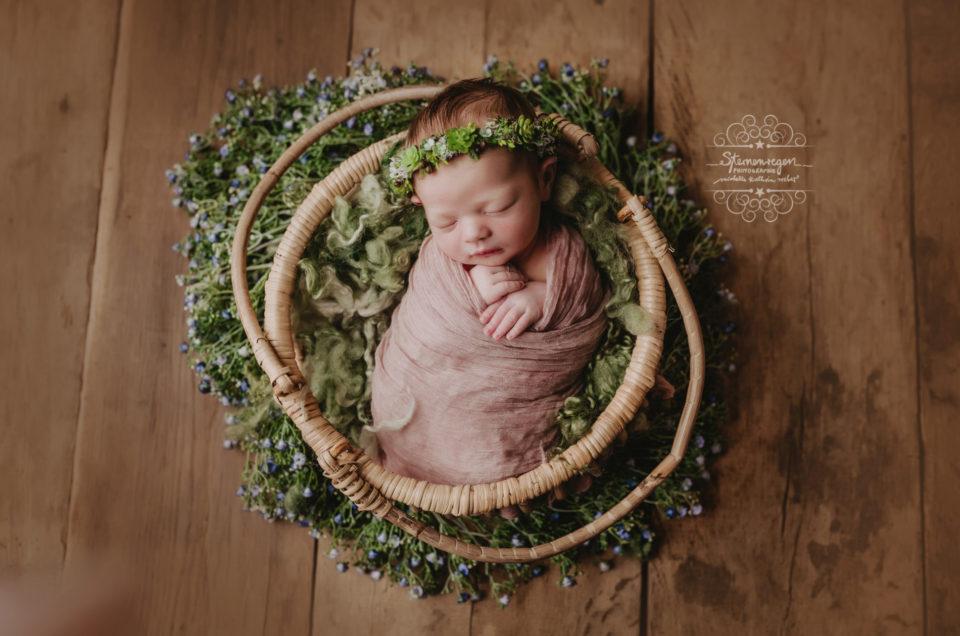 Neugeborene Prinzessinnen bei Sternenregen Photographie- Newbornshooting